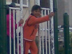 Rafah5-250x188
